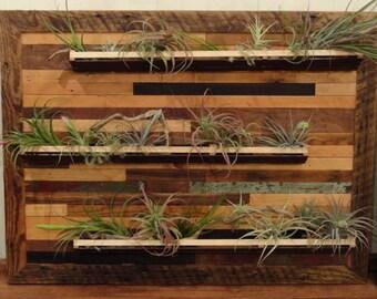 Handmade Indoor Wall Planter