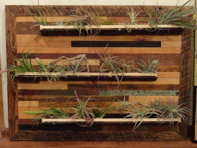 Handmade Indoor Wall Planter by Toadvine on Etsy