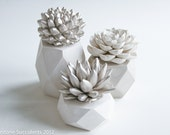 Sale: Nickel Set of 3 Succulents in Hexagonal, Tri-Level Containers, Tabletop, Desktop, Modern, Home and Office Decor