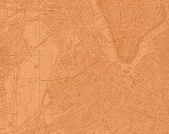 Map Toile Terracotta - Life...Enjoy the Ride Collection - Quilting Treasures Fabric 23442-T (sold by the 1/2 yard)