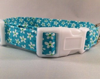 Teal & White Daisy Collar with White Buckle