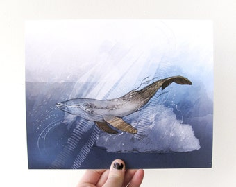 Willow Whale 8x10 Print