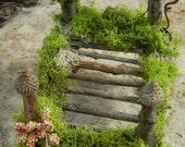 Miniature Fairy Beds