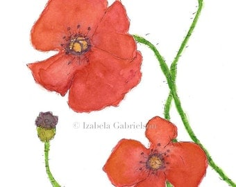 Poppies / Greeting Card