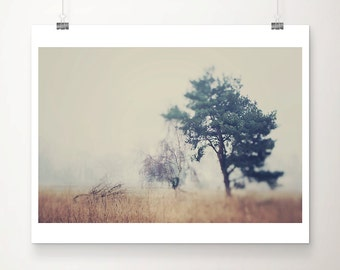tree photograph ethereal photograph nature photography winter photograph tree print rustic country decor nature print