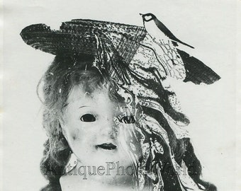 Doll head with bird montage surreal vintage art photo by C. Kofsky