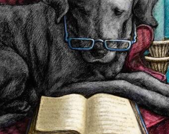 Black Labrador Retriever Art Print of Lab Reading a Book