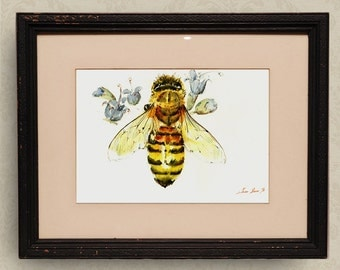 PRINT-Bee Honey insect art drawing  print watercolor painting art wall insect bee- Bee Art - - Art Print by Juan Bosco