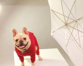 doggy long johns. Organic Cotton Onesies with a square hatch. Made in Vancouver Canada