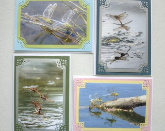 Dragonfly Love Set of 4 Photo Blank Note Cards