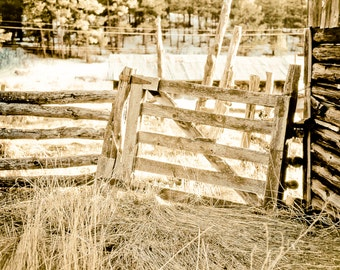 Rustic Art, wood gate, primitive gate, wood fence, split rail fence, architecture, amber, brown, Country Home Decor, Fine Art Print