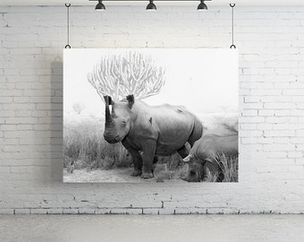 "58"" x 48"" Rhino Print - Vintage Photography"