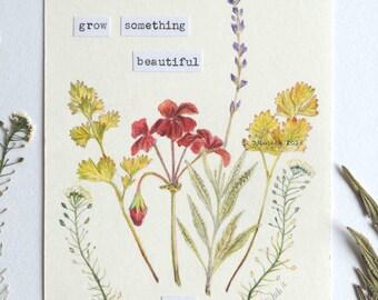 Original drawing pressed flowers, water colour pencils, botanical drawing, hope