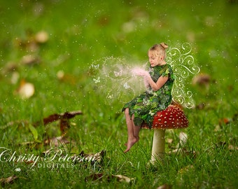 Red Toadstool Digital Background or Stock Photo for Fairy Photography