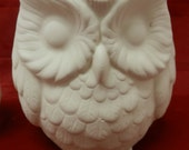 Owl Utensil or Pencil Holder or Planter * Ceramic Bisque *U-Paint Ready to Paint Unpainted