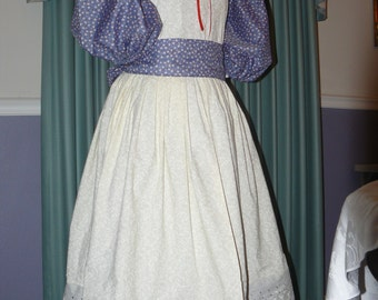 Civil War Reenactment Girls 10 12 14 Prairie Pioneer Dress Sizes Colors Available