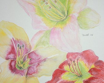 Day Lillies flower original watercolour painting