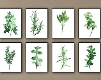 Kitchen Herbs Art Prints Set of 8 Green Botanical Herbalist Kitchen Decor Wall Paintings