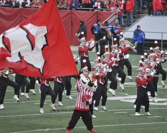 Sports Action Photograph, Wisconsin Badgers, Bucky Badger, signed by artist