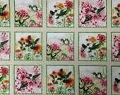 "Hummingbirds cotton panel -- approximately 23"" x 44"""