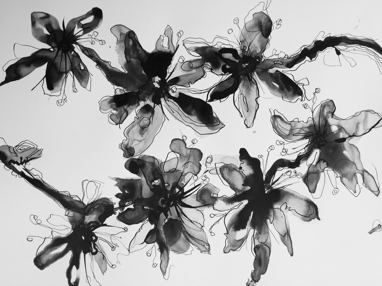 Dessin l 39 encre noir et blanc fleur abstraite Fleur noir et blanc