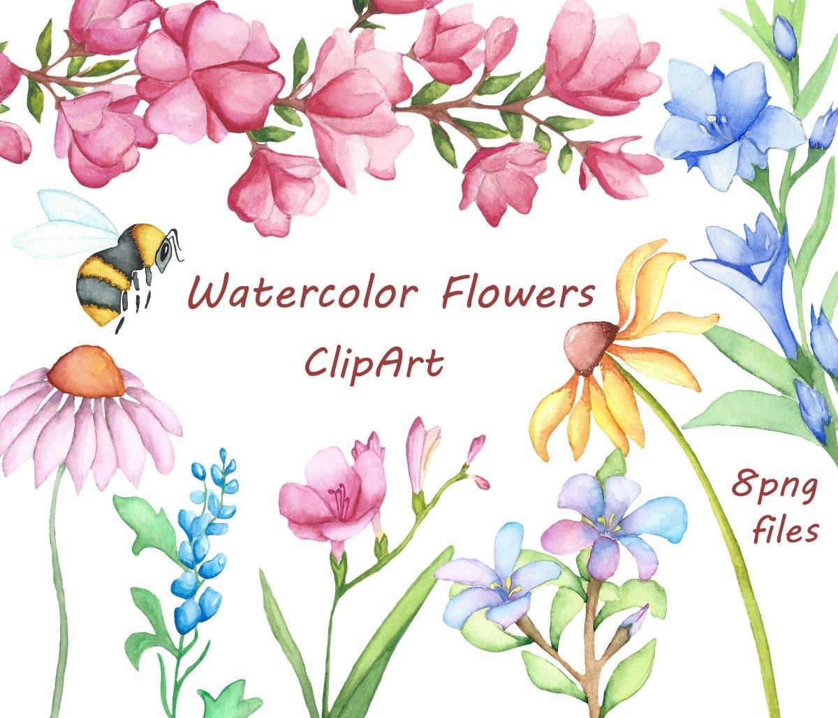 Watercolor Flowers Clipart Digital Clipart watercolor