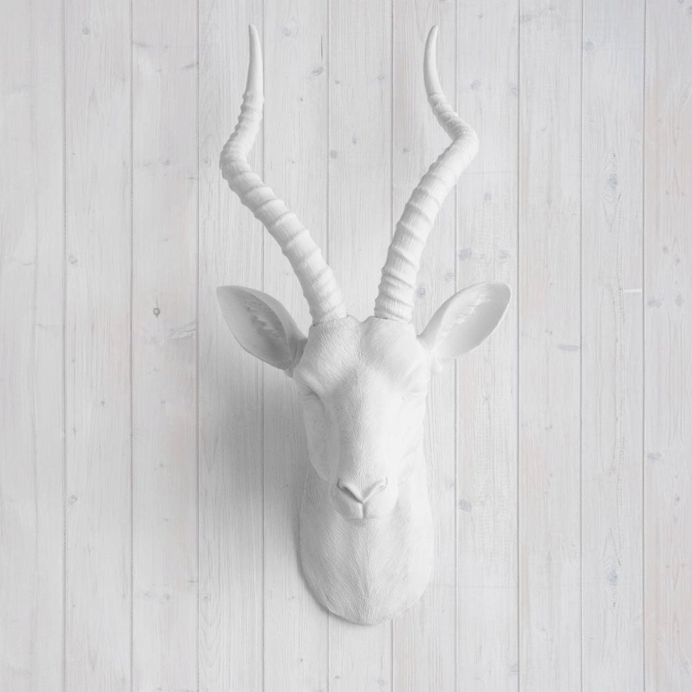 faux white antelope head by wall charmers fake ceramic. Black Bedroom Furniture Sets. Home Design Ideas