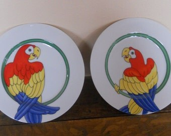 Vintage Fitz and Floyd Plates: Parrot in Ring
