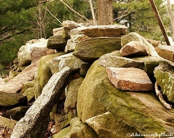Dry Stone Wall, Landscape Photo, Fine Art Wall Decor, Landscape Wall Art, Nature Photography, Maine Landscape, Gifts for Him Her, Rustic Art