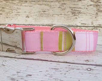 Adjustable Striped Dog Collar in pink and green  with mirror finish nickel plated contoured buckle