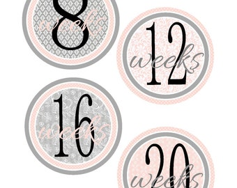 Weekly Pregnancy Stickers, Pregnancy Announcement, Pregnancy Belly Stickers, Pregnancy Photo Prop, Maternity Stickers, P15