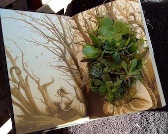Succulent Planter in a book. UK, Succulent garden, succulent centerpiece, succulent decor, plant art, succulent art, reclaimed,ecofriendly,