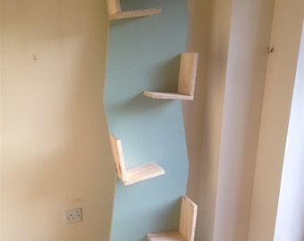 Ply Wood Bookcase