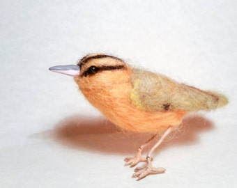 Worm-eating warbler, felted life-size warbler, needle felted bird sculpture