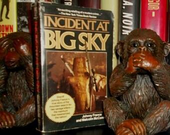 INCIDENT At BIG SKY Paperback True Crime Book 1987 Montana manhunt for two Survivalist killers Doomsday Preppers