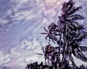 Palms & Clouds In The Breeze