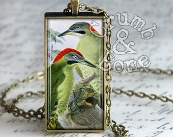 Bird Necklace, Green Woodpeckers Picus Viridis, Pendant Necklace Picidae, Woodpecker Bird Jewelry, Handmade Nature Jewelry, Bird Lover Gifts