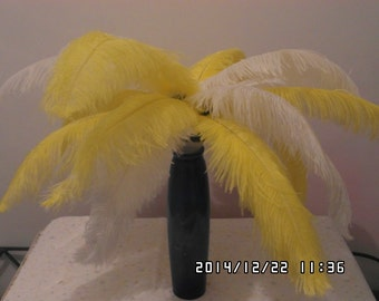 100 white & yellow Ostrich Feather Plume for Wedding centerpieces,