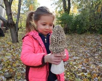 Giant mushroom Etsy