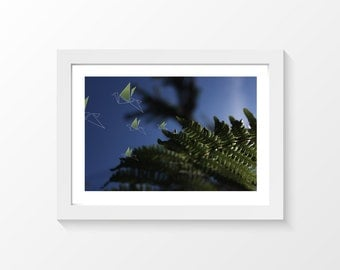 """Fern Birds / Origami bird fern blue green printable art home decor downloadable art to print at home or at a print shop / A4 and 8.5"""" x 11"""""""