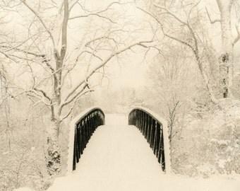 Winter park.Lith print.Darkroom processed.