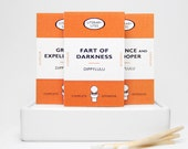 Gag gift matchbox set of Literary Lites -- When the air thickens, so should the plot. Tiny mini matchbooks. Dippylulu classics.