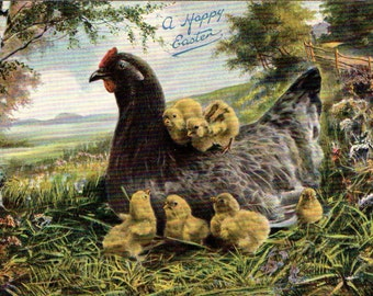 TUCK EASTER POSTCARD Post Card - Mama Hen and Baby Chicks