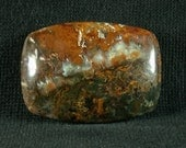 Linda Marie Plume Agate Freeform Cabochon from Oregon 26x38x8mm