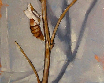 "Still Life Oil Painting, Cocoon, Nature Art, Original Art, Insect Specimen - ""Butterfly Leftovers"""