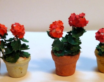 Miniature geranium, half scale for dollhouses