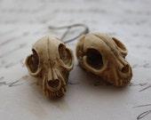 Resin Cat Skull Earrings - Gothic Death Cat Resin Brass Earrings Morbid Cameo