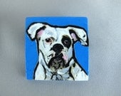 Hand Painted Portrait Jewelry Pin Brooch of White Boxer Dog named Finnegan