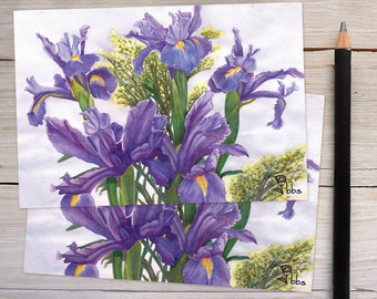 flower cards, iris note card set, botanical stationery, small cards and envelopes