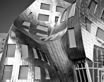 Black and White Travel Photography, Gehry Architecture, Silver, Modern, Abstract, Cleveland Clinic, Office Decor